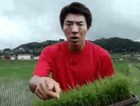 お米食べろ