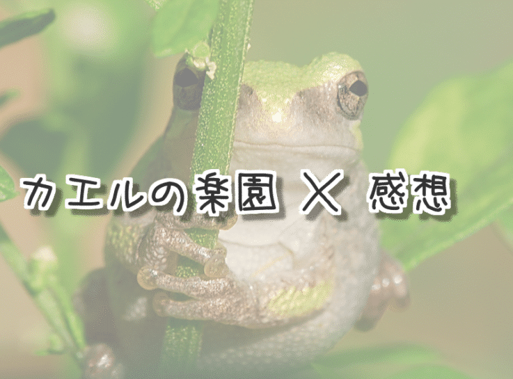 カエルの楽園