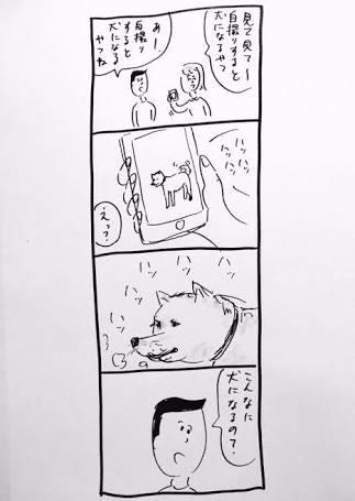 犬の四コマ