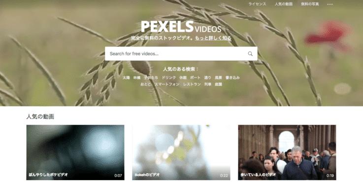 無料動画素材 Pexels Videos