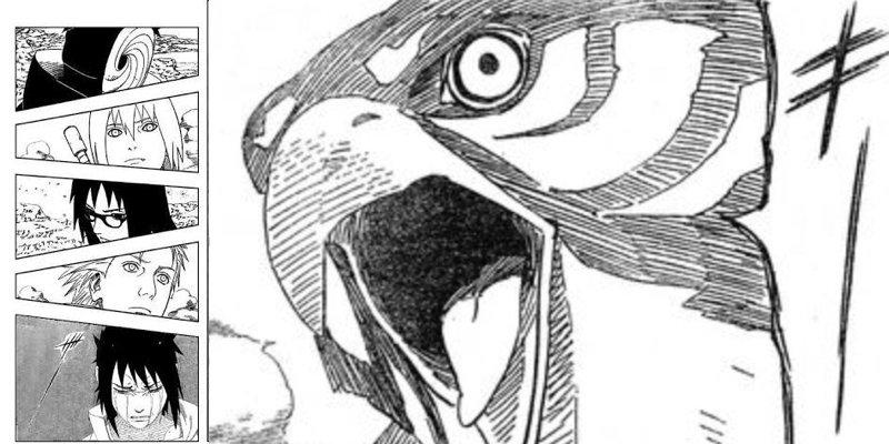 ナルトスの鷹