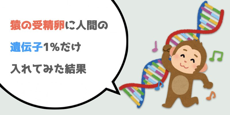猿の受精卵に人間の遺伝子1%だけ入れてみた結果